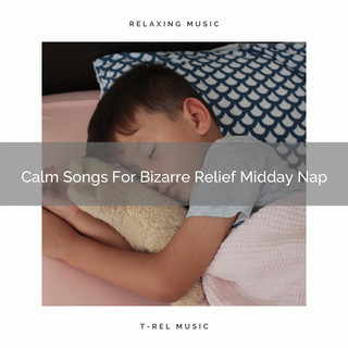 Calm Songs For Bizarre Relief Midday Nap