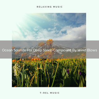 Ocean Sounds For Deep Sleep Composed By Wind Blows