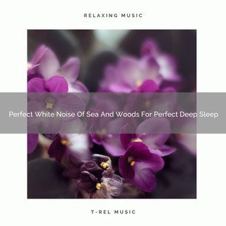 Perfect White Noise Of Sea And Woods For Perfect Deep Sleep