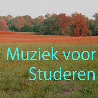 Muziek Voor Studeren 2