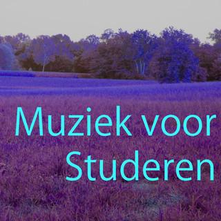 Muziek Voor Studeren 4