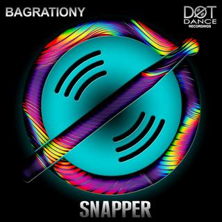 Snapper (Radio Mix)