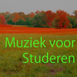 Muziek Voor Studeren 8