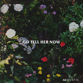Go Tell Her Now (Acoustic)