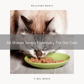 All Waves Songs Especially For Our Cats