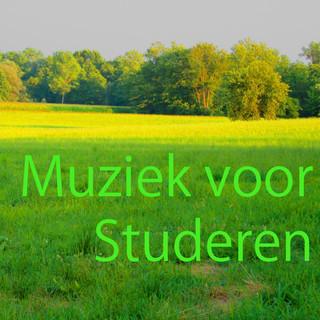 Muziek Voor Studeren 7