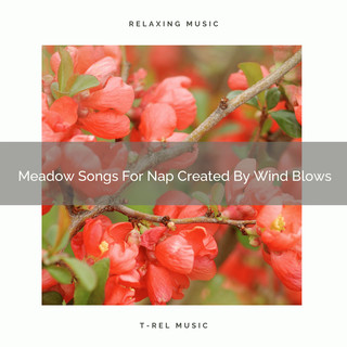 Meadow Songs For Nap Created By Wind Blows