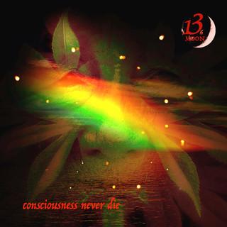Consciousness Never Die