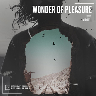 Wonder Of Pleasure