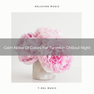 Calm Noise Of Colors For Tuned - In Chillout Night