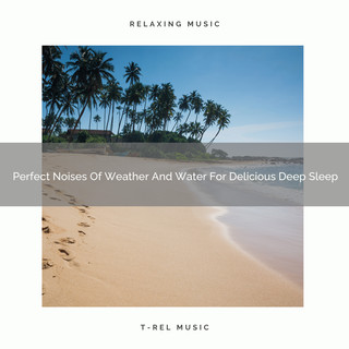 Perfect Noises Of Weather And Water For Delicious Deep Sleep