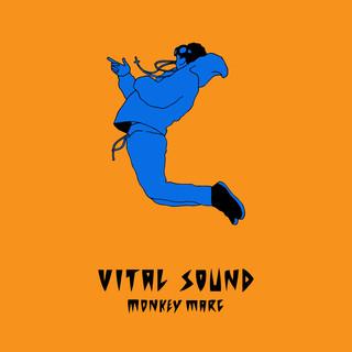 Vital Sound