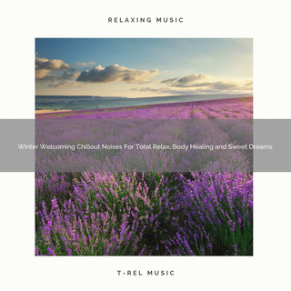 Winter Welcoming Chillout Noises For Total Relax, Body Healing And Sweet Dreams