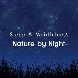 Nature By Night (Sleep & Mindfulness)