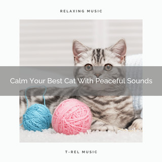 Calm Your Best Cat With Peaceful Sounds
