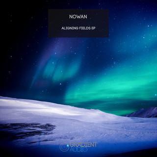 Aligning Fields EP