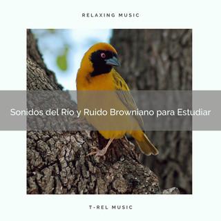 Sonidos Del Río Y Ruido Browniano Para Estudiar