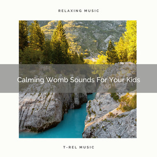 Calming Womb Sounds For Your Kids