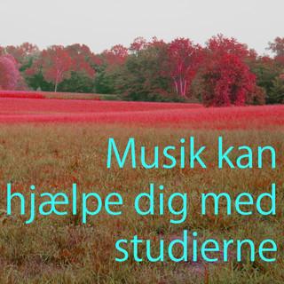 Musik Att Studera Till - Dempet Musikk For Studier Vol. 2