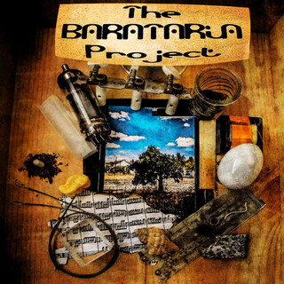 The Barataria Project