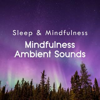 Mindfulness Ambient Sounds (Sleep & Mindfulness)