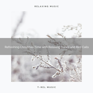 Refreshing Christmas Time With Relaxing Tunes And Bird Calls