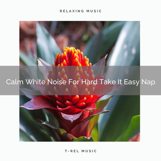 Calm White Noise For Hard Take It Easy Nap