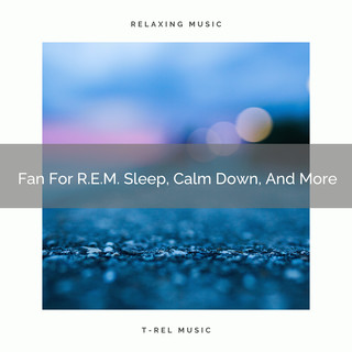 Fan For R.E.M. Sleep, Calm Down, And More
