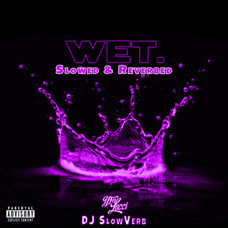 Wet (She Got That…) [Slowed & Reverbed]
