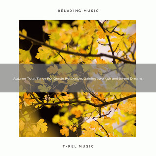 Autumn Total Tunes For Gentle Relaxation, Gaining Strength And Sweet Dreams