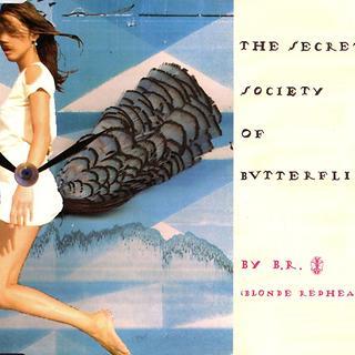 The Secret Society Of Butterflies