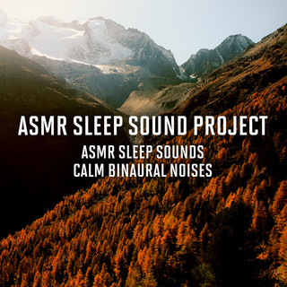 ASMR Sleep Sounds - Calm Binaural Noises