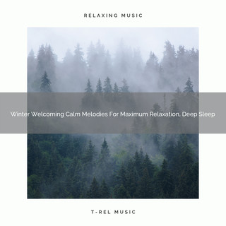 Winter Welcoming Calm Melodies For Maximum Relaxation, Deep Sleep