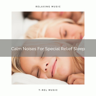 Calm Noises For Special Relief Sleep