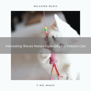 Interesting Waves Noises Especially For Indoors Cats