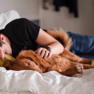 Sleeping And Relaxing Music For Dogs And Cats,Sessiones De Sonidos Para Dejar Tus Mascotas En Paz, Volumen 1
