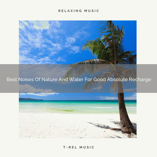 Best Noises Of Nature And Water For Good Absolute Recharge