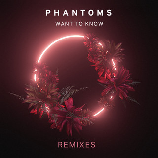 Want To Know (Remixes)