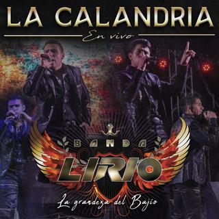 La Calandria (En Vivo)