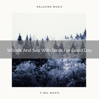 Woods And Sea With Birds For Good Day