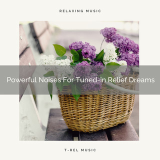 Powerful Noises For Tuned - In Relief Dreams
