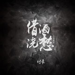 借酒澆愁 (DJ何鵬版)