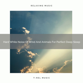 Hard White Noise Of Wind And Animals For Perfect Deep Sleep