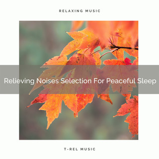 Relieving Noises Selection For Peaceful Sleep