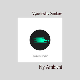 Fly Ambient