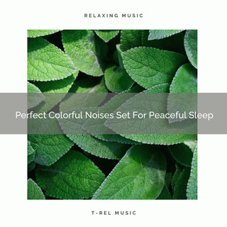 Perfect Colorful Noises Set For Peaceful Sleep