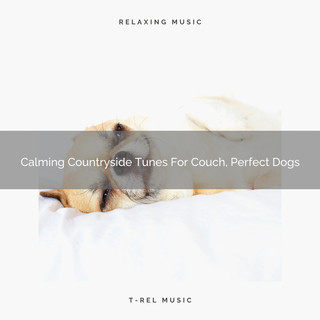 Calming Countryside Tunes For Couch, Perfect Dogs