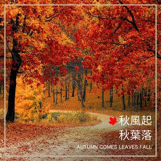 秋風起.秋葉落 Autumn Comes, Leaves Fal