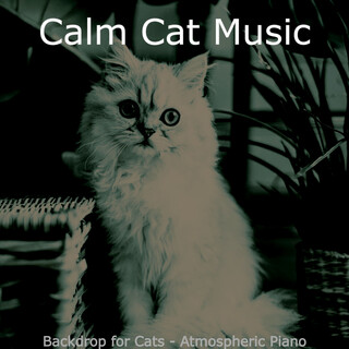 Backdrop For Cats - Atmospheric Piano