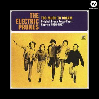 Too Much To Dream - Original Group Recordings:Reprise 1966 - 1967